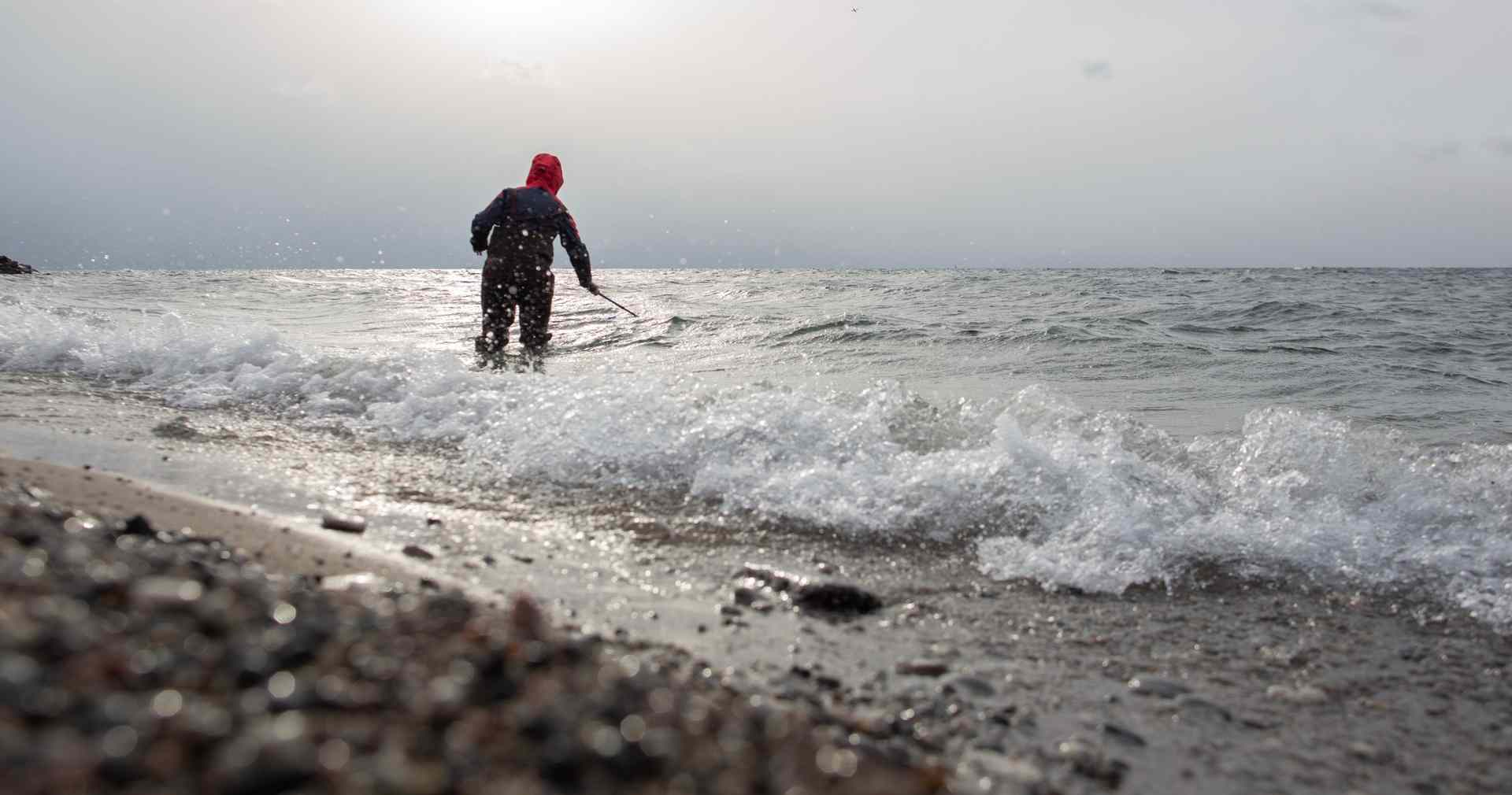 Citizen Science in the Great Lakes: Toronto Monitoring Hub ...
